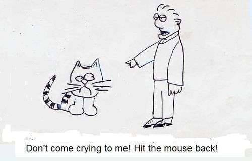 Mouse_hitting_cat