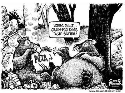 Bears_feeding