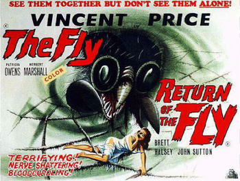 Fly_and_return_poster