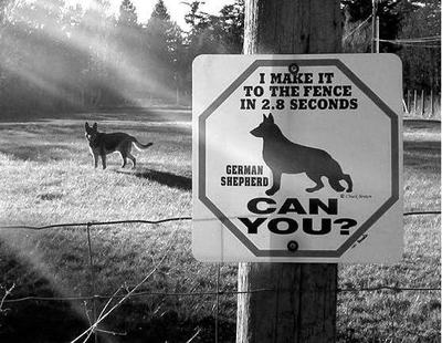 German_shepherd_warning_sign