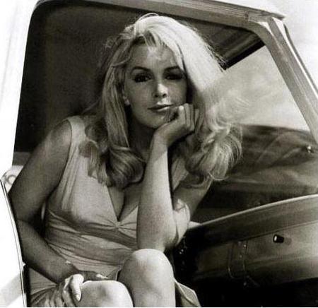 Stella_in_a_truck_cab_2